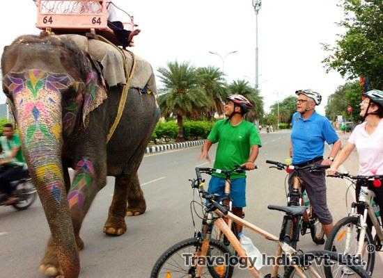 Turismo. Jaipur, la ciudad rosa