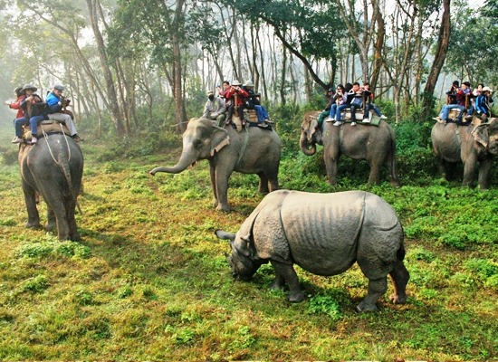 viajes grupo in Agra furete